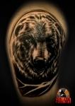 Медведь (реализм)
