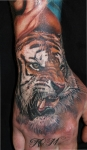 тигрыч