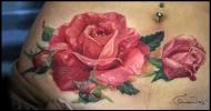 """""""Розы"""" .."""